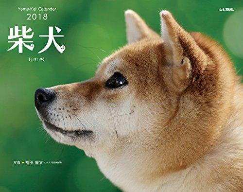 カレンダー2018 柴犬 (ヤマケイカレンダー2018) 発売日