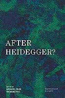 After Heidegger ? (New Heidegger Research)
