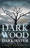 Dark Wood Dark Water (English Edition)