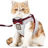 Best 猫ハーネス - 【Momugs Akira】ペット用品 猫 牽引ロープ 散歩 が楽しくなる選べる ネクタイ 洋服 蝶結び Review