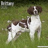 Brittany Calendar 2020