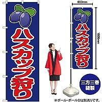 のぼり旗 ハスカップ狩り JA-170 (受注生産)