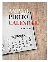 ANIMAL PHOTO CALENDAR 2020: ANIMAL PHOTOGRAPH CALENDAR: animal calendar 202 animal desk calendar 202,animal photo album,animal photo wall art, animal photograph, animal photography book,animal wall calendar 2020