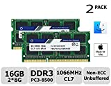 TT-Timetec Hynix IC 16GB Kit (2x8GB) Mac用 DDR3 PC3-8500 1066 MHz Apple 専用増設メモリ 永久保証 (2x8GB)
