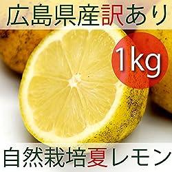 無農薬・無肥料 広島産 黄金の島レモン 1kg