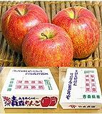 【B級品】竹嶋有機農園 ふじ林檎 5kg(化学農薬・化学肥料不使用)※ワケあり・傷あり