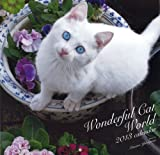 Wonderful Cat Worldカレンダー2013 ([カレンダー]) 画像