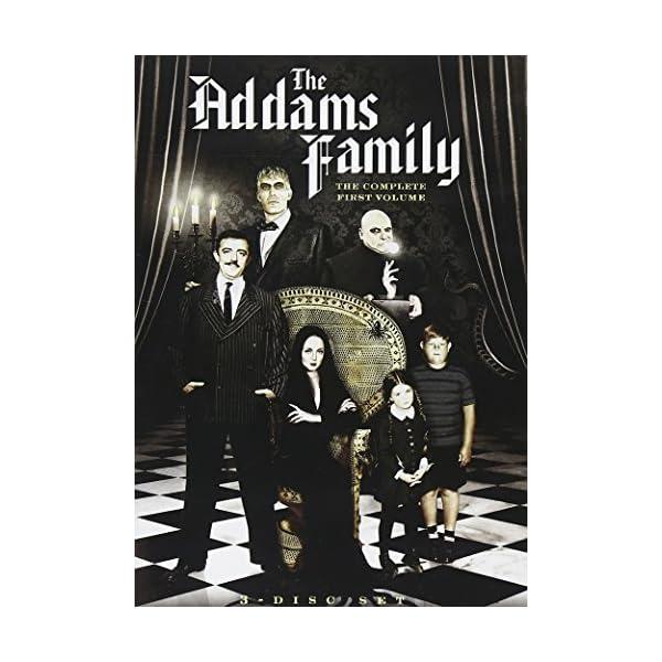 Addams Family 1 [DVD] [I...の商品画像