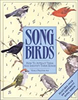 Song Birds: How to Attract Them and Identify Their Songs