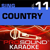 Sing Country Vol. 11 [KARAOKE]