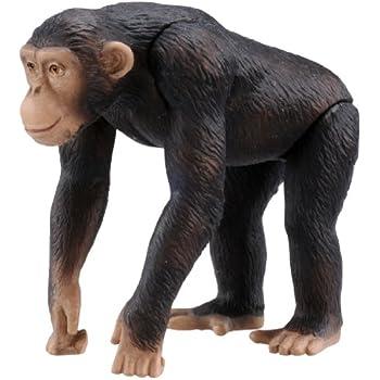 アニア AS-14 チンパンジー