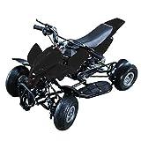 ミニ 四輪バギー 50cc 45km/h エンジン ミニカー アウトドア 混合ガソリン ブラック ホワイト レッド ブルー【レース サーキット ご自宅でお庭でレース!】
