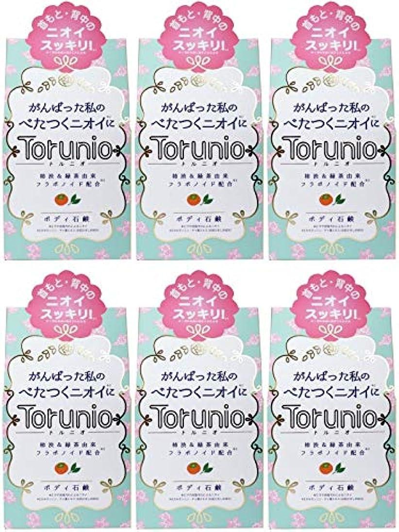 【まとめ買い】Torunio(トルニオ)石鹸 100g【×6個】