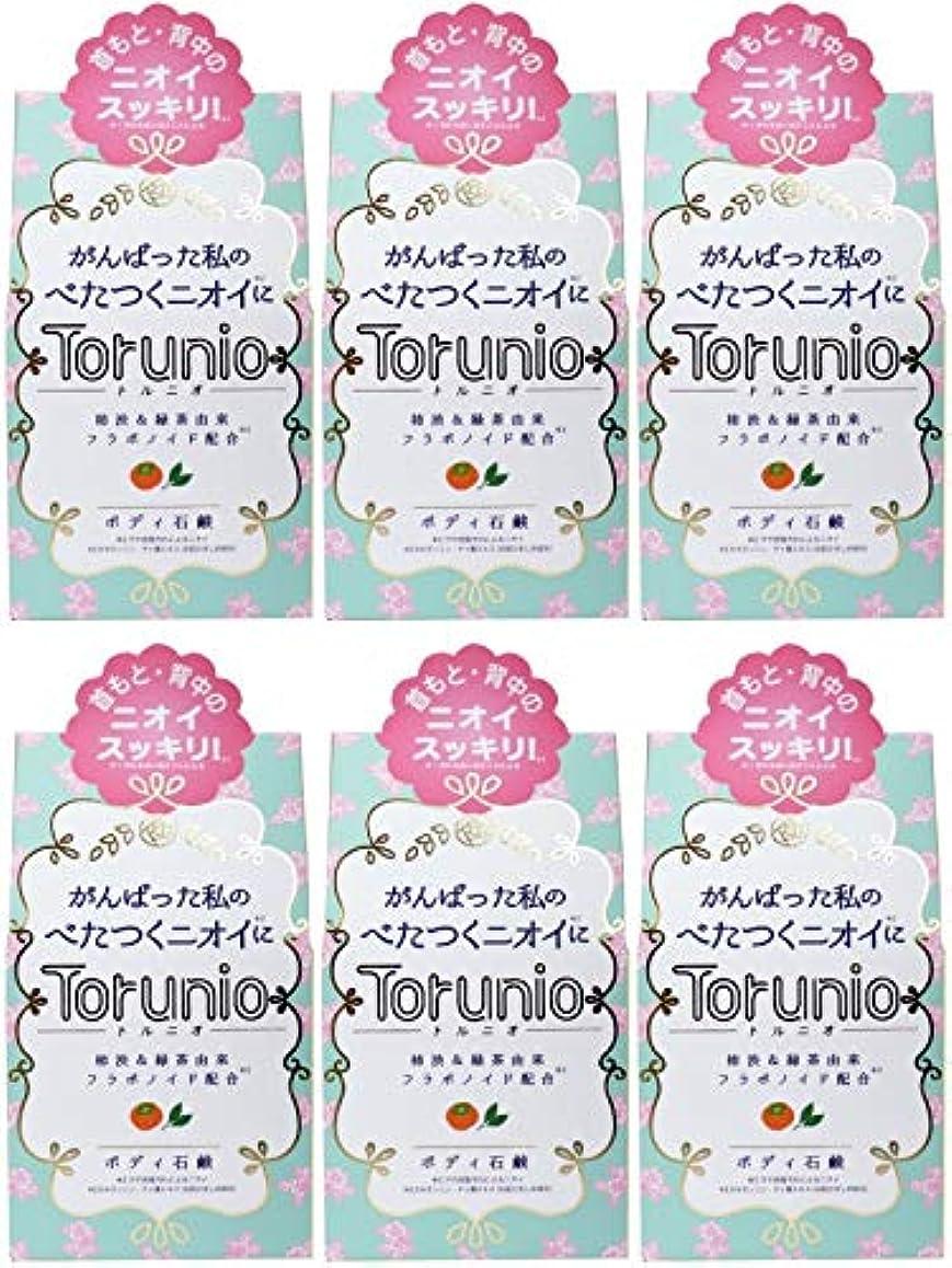 フィドル基準件名【まとめ買い】Torunio(トルニオ)石鹸 100g【×6個】