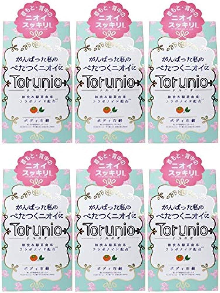 キャンセルサイトラインフォーム【まとめ買い】Torunio(トルニオ)石鹸 100g【×6個】