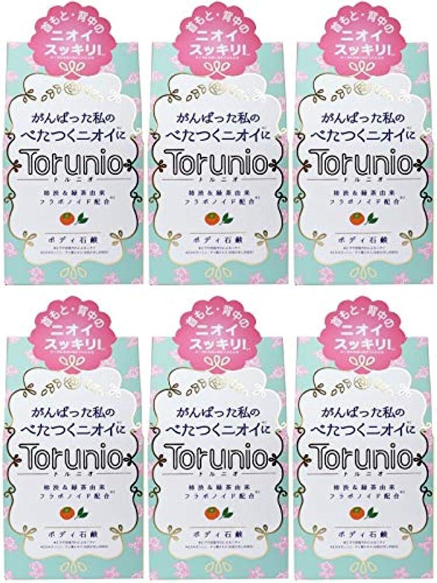 磨かれためまい宿る【まとめ買い】Torunio(トルニオ)石鹸 100g【×6個】