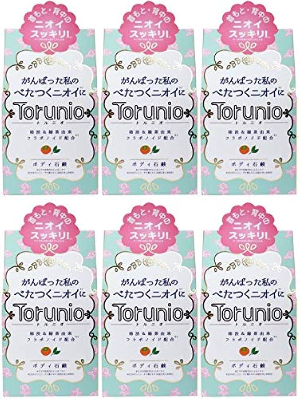 したがってルー慣れる【まとめ買い】Torunio(トルニオ)石鹸 100g【×6個】