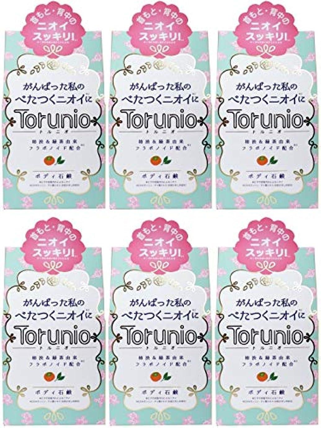 花に水をやる主人国民投票【まとめ買い】Torunio(トルニオ)石鹸 100g【×6個】