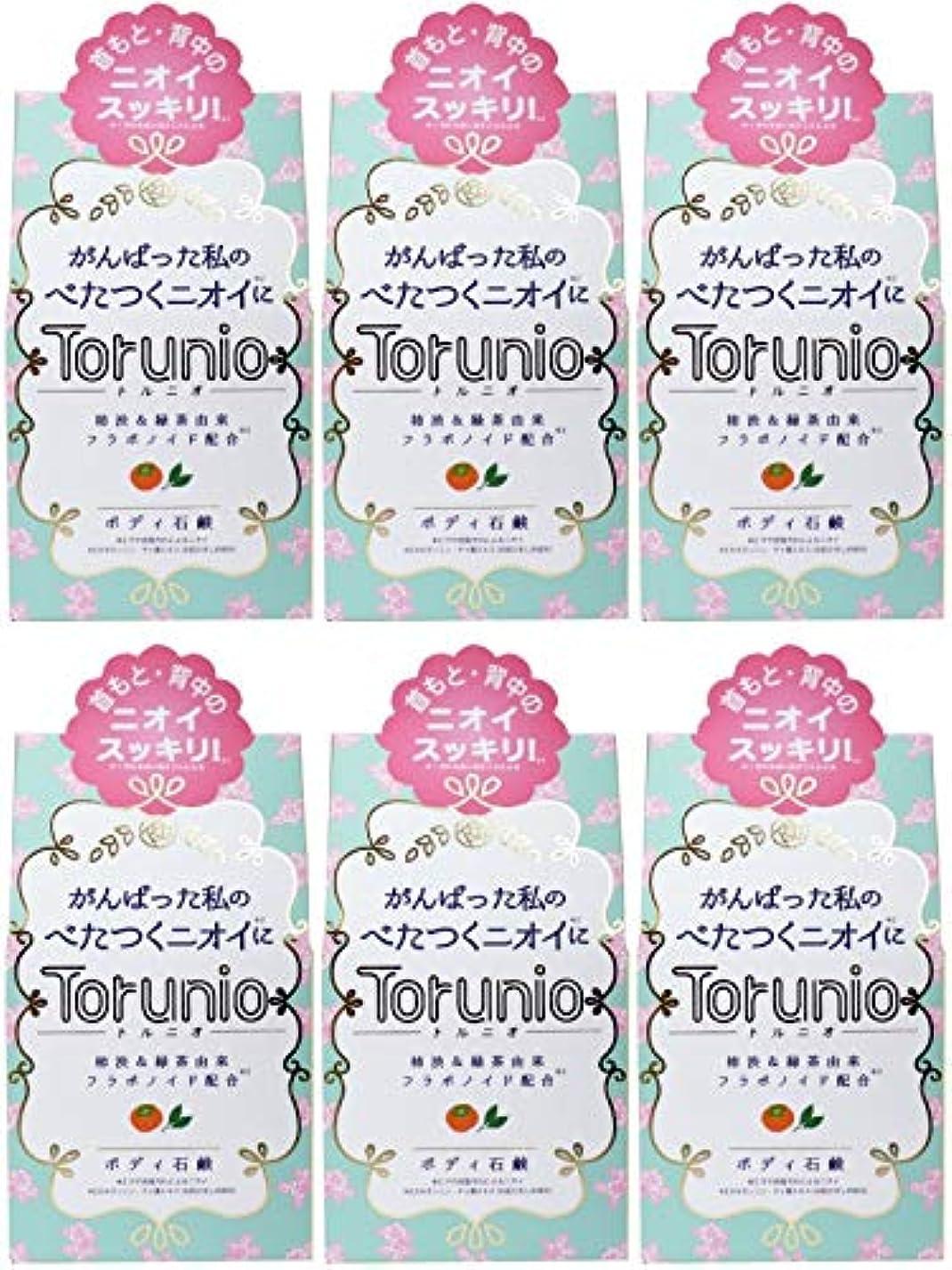 葉巻飼い慣らすランチ【まとめ買い】Torunio(トルニオ)石鹸 100g【×6個】