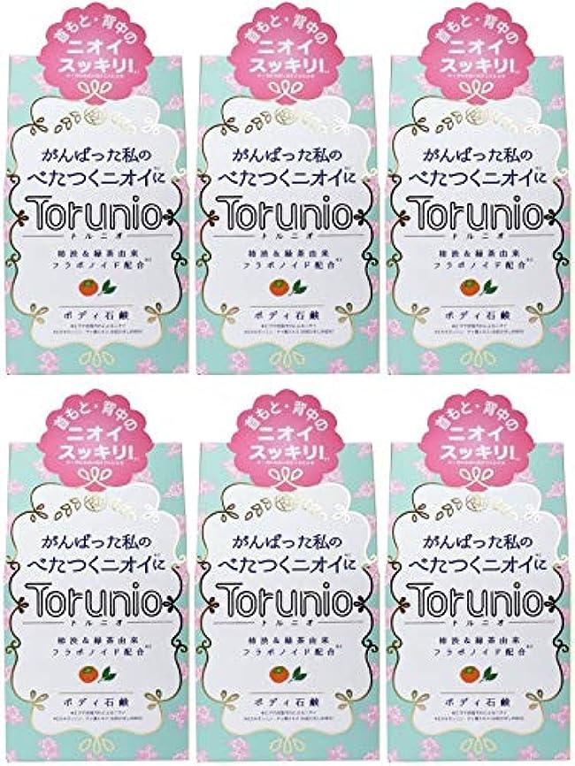 ポップ証書最少【まとめ買い】Torunio(トルニオ)石鹸 100g【×6個】