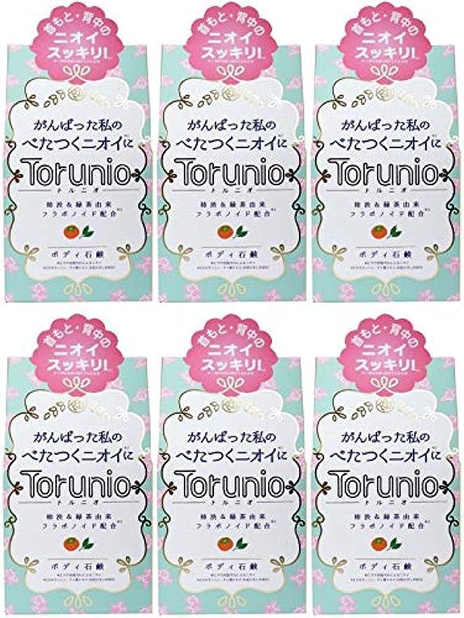 ただ酸っぱいペッカディロ【まとめ買い】Torunio(トルニオ)石鹸 100g【×6個】