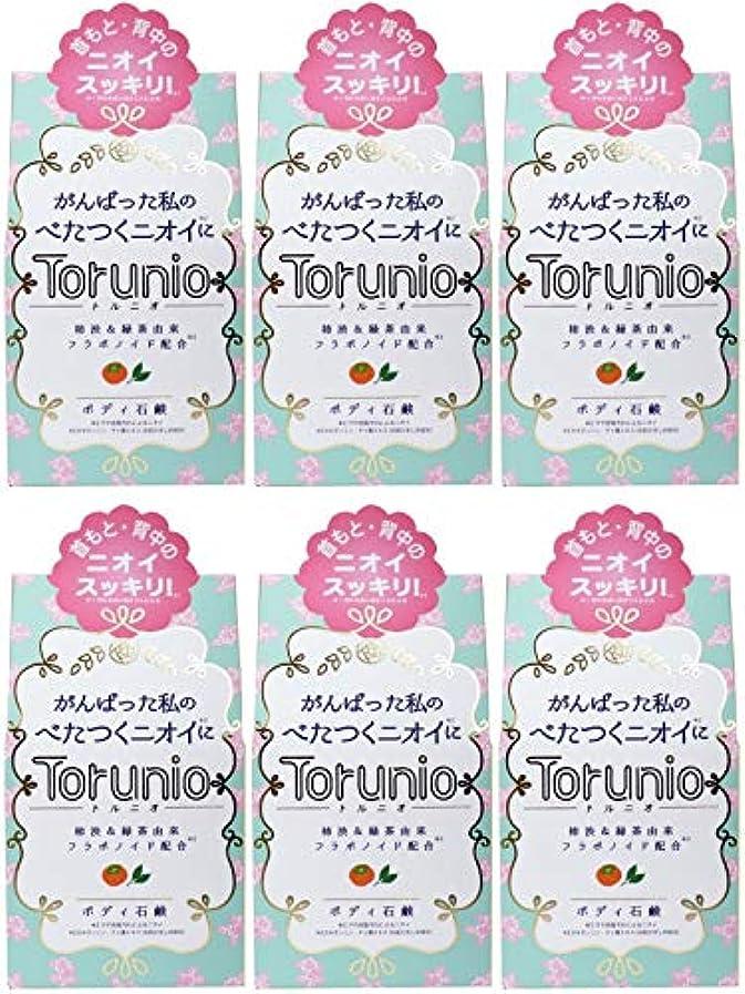 油衣服無効にする【まとめ買い】Torunio(トルニオ)石鹸 100g【×6個】
