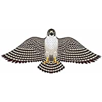 Gayla Industries 839 Peregrine Falcon Wildlife Wingフラッパーkite-55