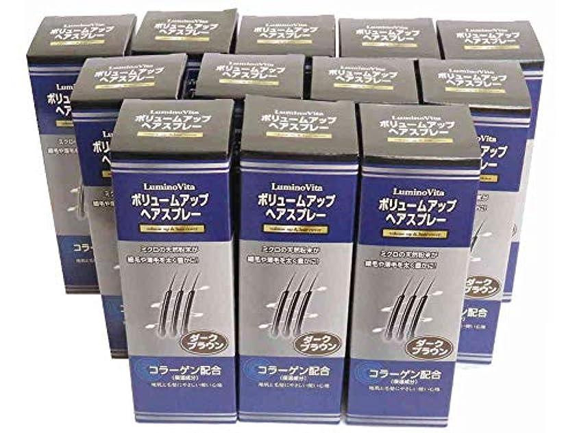 【コラーゲン配合】お得なセットDBRダークブラウン【200g×12本】VoL-up ボリュームアップスプレー
