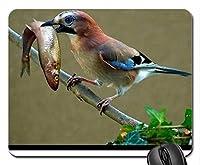 美しいかっこいい鳥のマウスパッド、ランチのマウスパッド、マウスパッド