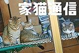 家猫通信07