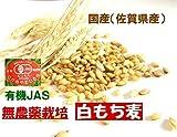 古賀農園 (佐賀県)国産無農薬白もち麦(玄麦)1kg