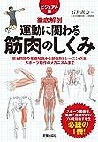 運動に関わる筋肉のしくみとトレーニング法 (徹底解剖)