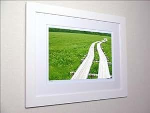 アートフォト 尾瀬ヶ原湿原の木道/ 絵画 壁掛け のあゆわら