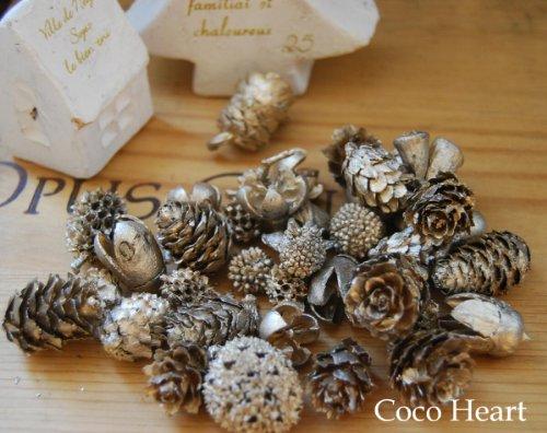 ~Coco Heart~ ミニコーンアソート プラチナ 60g(木の実・ドライフラワー・クリスマス)