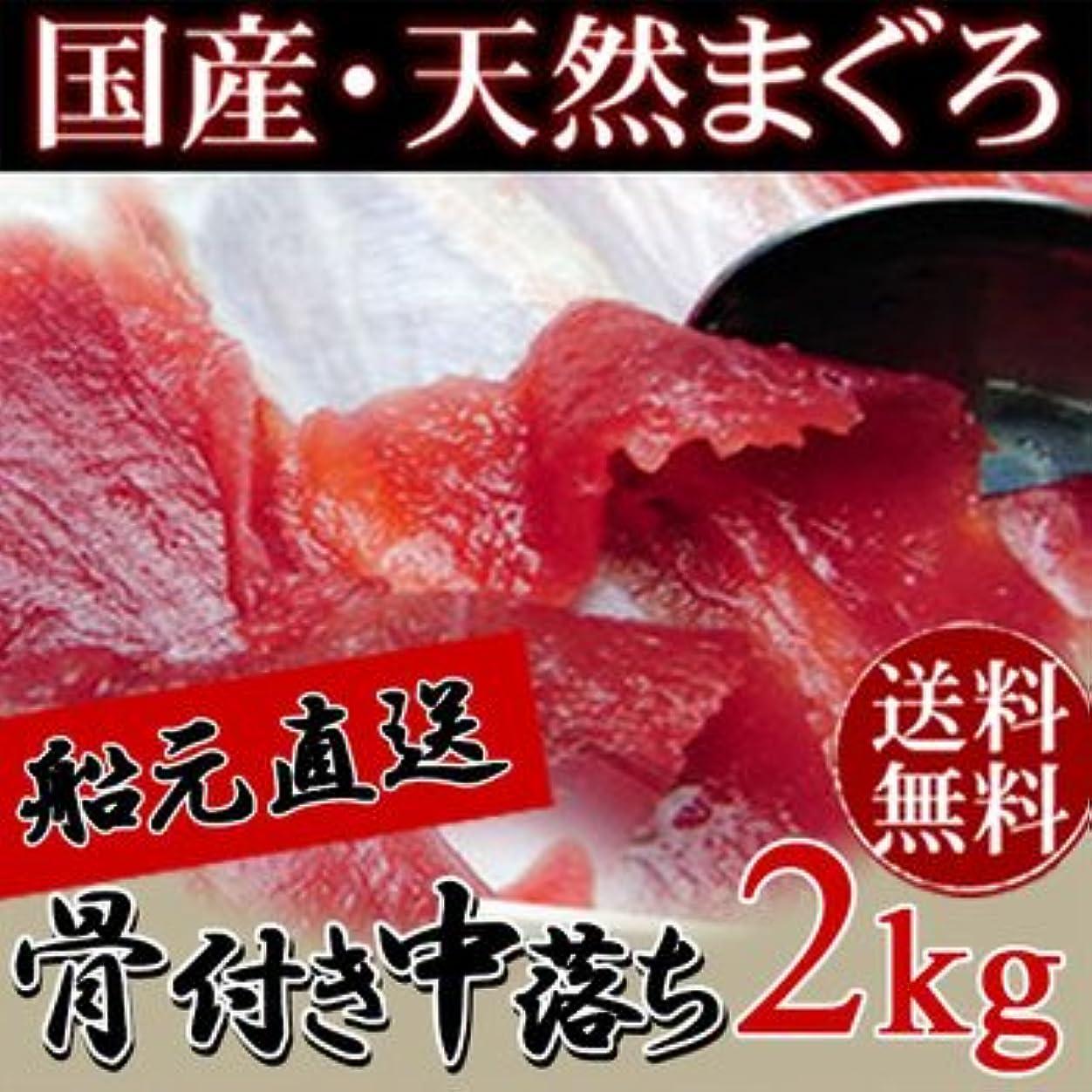 ハンバーガー混乱した持参ホロニックフーズ 国産?天然メバチマグロ赤身骨付き中落ち2kg