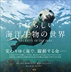 すばらしい海洋生物の世界