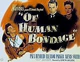 """オリギャラリー ? 人類のボンデージ、エレノア・パーカー、ポール・ヘンレイド、アレクシス・スミス、1946年。 16""""x12"""" OP-201533112-1612"""