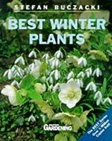 Best Winter Plants (Best Gardening)