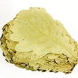 柏の葉 柏餅の葉 かしわの葉 乾燥タイプ 柏餅 こどもの日 100枚