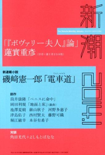 新潮 2014年 01月号 [雑誌]の詳細を見る