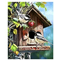 DIY Birds Painting for Home Decoration Paint by Numbers Kit for Adults Beginners
