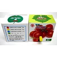 玉出しガム ぶどう味 10円 120付【駄菓子】