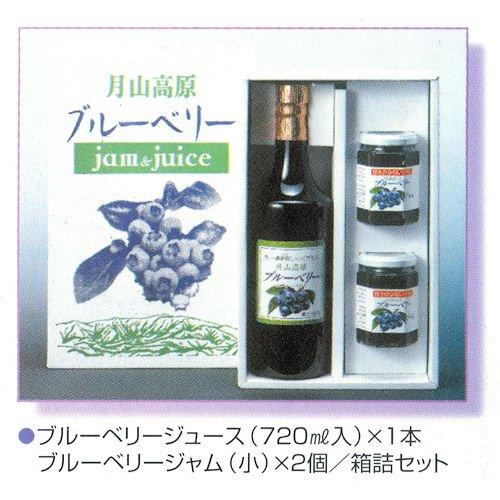 国産無農薬栽培 ブルーベリージュース 720ml1本・ジャム(180g)2個セット