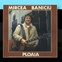 Ploaia (The Rain) by Mircea Baniciu