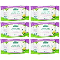 Aleva Naturals Bamboo Baby Travel Wipes, 180 Count (6 Packs of 30) by Aleva Naturals
