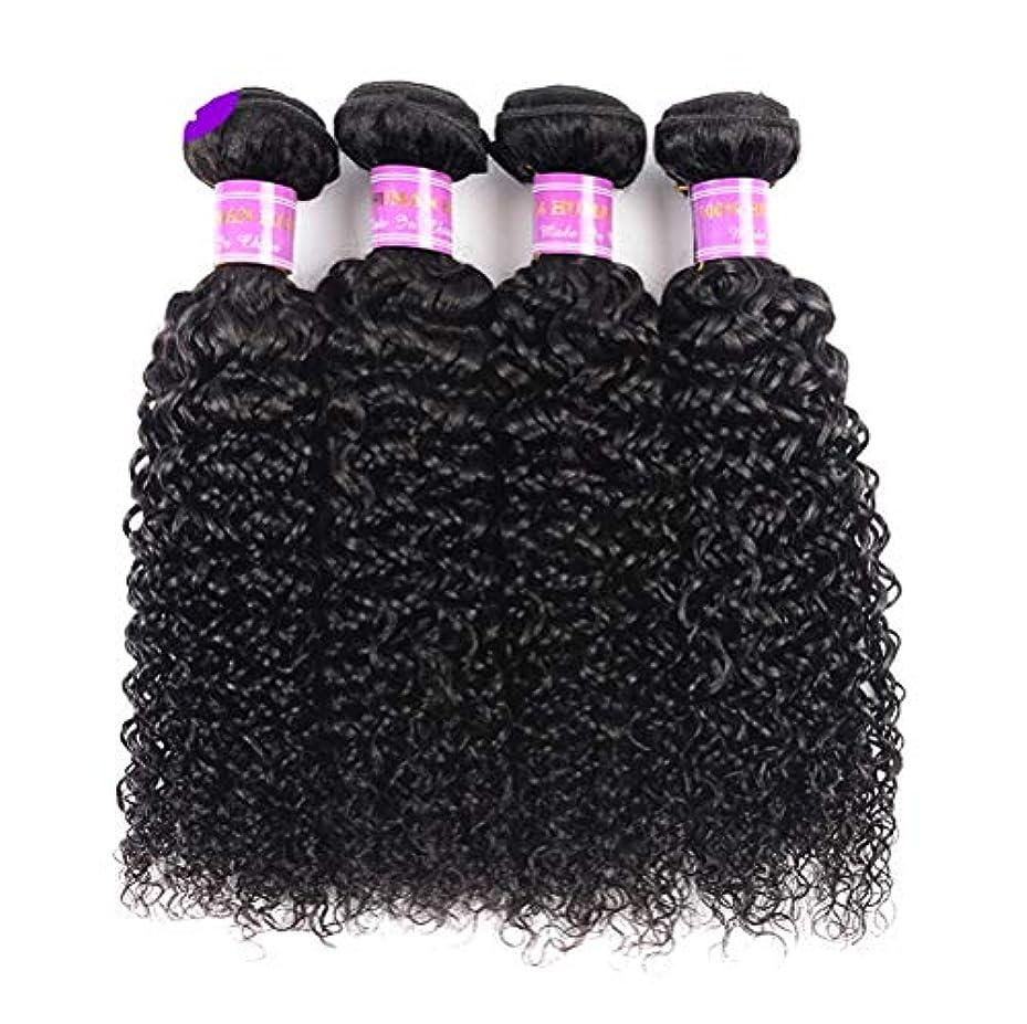 リーダーシップ入口注釈を付ける髪織り未処理ブラジルディープカーリーヘアバンドル本物の人間の髪バンドルバージンブラジル髪バンドル1個/パックナチュラルカラー(100 +/- 5g)/ pc