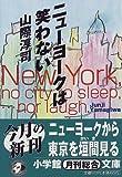 ニューヨークは笑わない (小学館文庫)