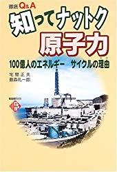 徹底Q&A 知ってナットク原子力―100億人のエネルギー サイクルの理由 (電気新聞ブックス)