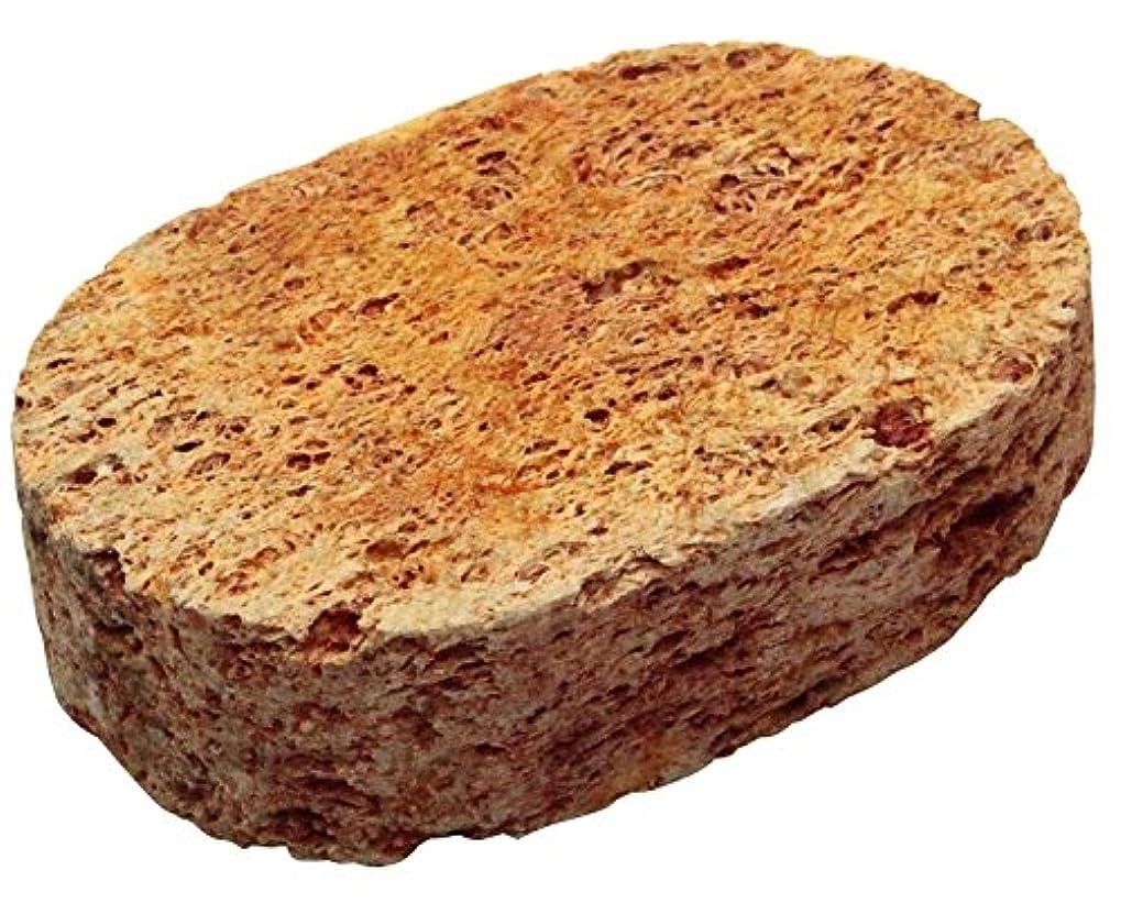 小石プロペラ留まるYUIRO 軽石 染 キャロット 7.5×5×2cm YS-1004RD