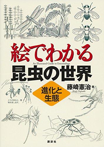 絵でわかる昆虫の世界 進化と生態 (KS絵でわかるシリーズ)
